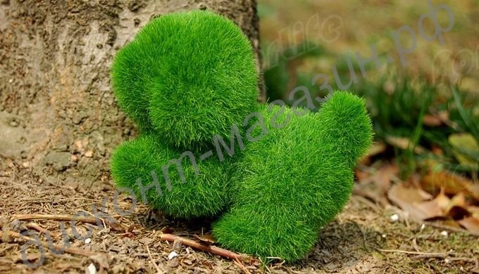 Поделки из газонной травы