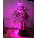 Фитолампа LED 220В  10Вт