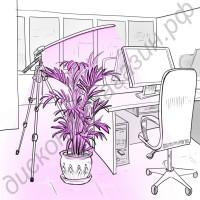 LED светильник для растений на штативе «Везен», гарантийное обслуживание - 1 год