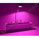 Фитопрожектор «АДАРА» с мощным COB фитодиодом полного спектра, гарантийное обслуживание - 1 год