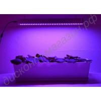 Искусственная подсветка для растений на базе светодиодов SMD 5630 «Мимоза», гарантийное обслуживание - 1 год