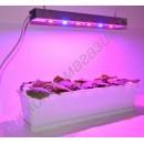Лампа для выращивания растений на мощных 10Вт красных и синих светодиодах «Денеб», гарантийное обслуживание - 1 год