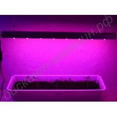 Светильник фитосветодиодный для растений на подоконнике «Спика»