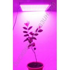 LED grow панель «Радуга» 48-720Вт для выращивания рассады, цветов, комнатных растений, гарантийное обслуживание - 1 год