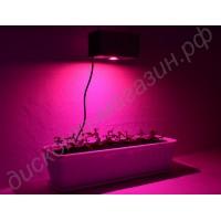 Лампа для освещения оранжереи с мощным фито светодиодом 30 Вт «Капелла», гарантийное обслуживание - 1 год