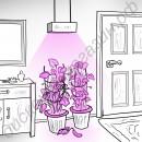 Лампа для освещения оранжереи с мощным фито светодиодом 50 Вт «Капелла», гарантийное обслуживание - 1 год