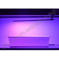 Фито лампа на прищепке для досвечивания цветов «Арктур», гарантийное обслуживание - 1 год