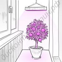 Обычная светодиодная лампа для растений «Сириус», гарантийное обслуживание - 1 год