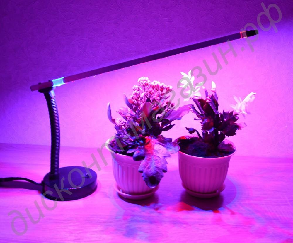 Лампа дневного света для цветов фото