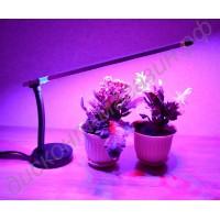 Лампа настольная для подсвечивания цветов «Альферац», гарантийное обслуживание - 1 год