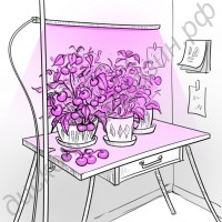 Светильник для растений с регулировкой высоты и креплением к столу «Принцепс», гарантийное обслуживание - 1 год