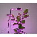 Подсветка для растений в горшке «Фейт», гарантийное обслуживание - 1 год