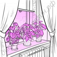 Светильник на присоске для растений на подоконнике «Шедар», гарантийное обслуживание - 1 год