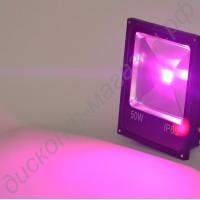 Фито прожектор для теплиц мощностью 50Вт «Менкар», гарантийное обслуживание - 1 год