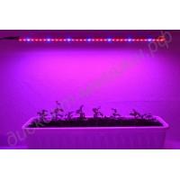 Влагозащищённая фитолинейка для выращивания рассады и досвечивания растений «Сабик», гарантийное обслуживание - 1 год