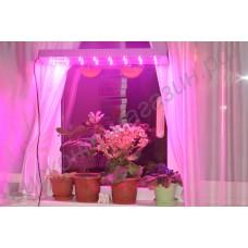 Фитосветильник для подоконника на титанических присосках «Ботейн», 48Вт, гарантийное обслуживание - 1 год