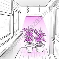 Био фитопанель для растений «Меропа» 120Вт, гарантийное обслуживание - 1 год