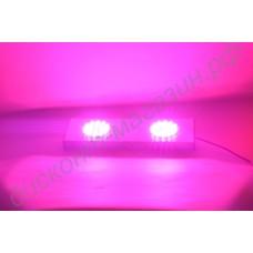 Тепличный фитосветильник полного спектра «Проксима» 48Вт, гарантийное обслуживание - 1 год