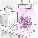 """Фитосветодиодная линзованная лампа для растений """"Скип"""", гарантийное обслуживание - 1 год"""